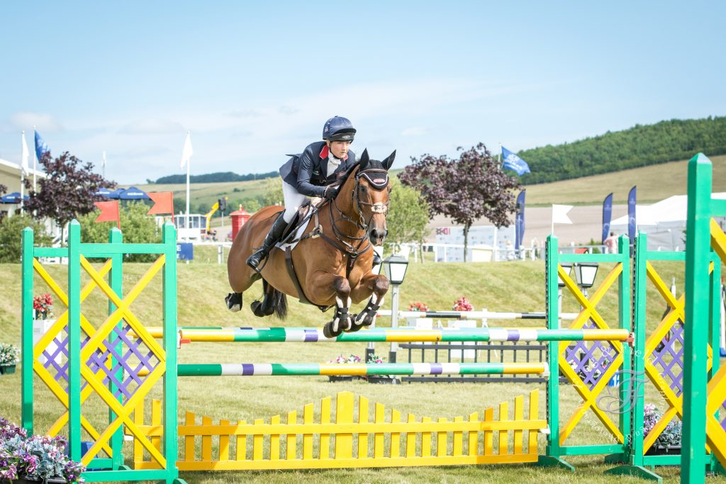 Barbury by Equine Photographer Frog and Field