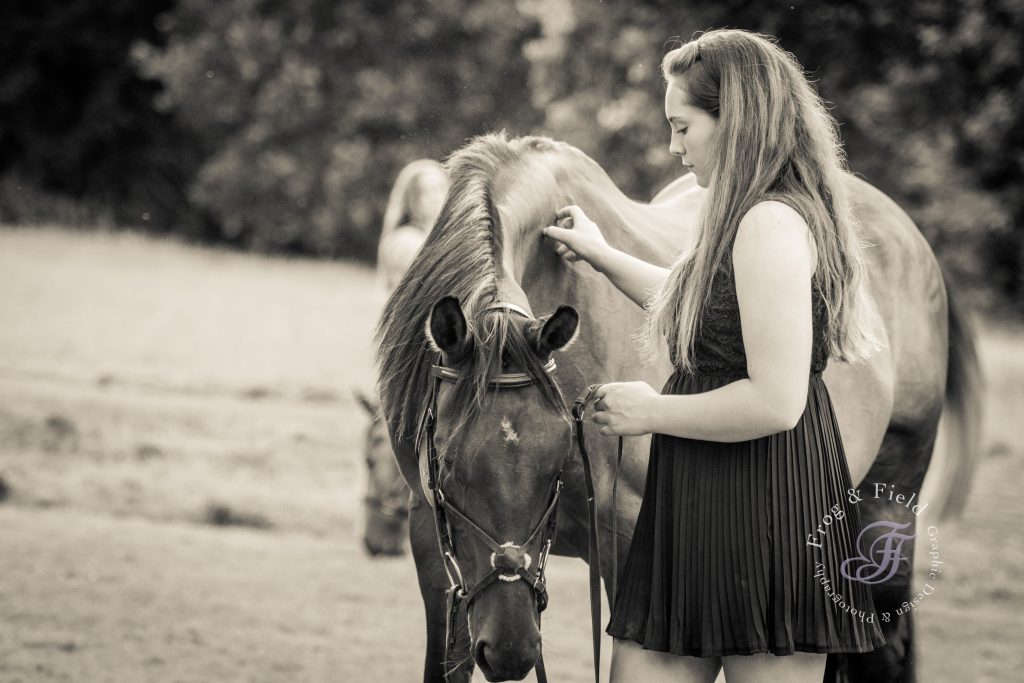 Bodiam Castle Equine Shoot