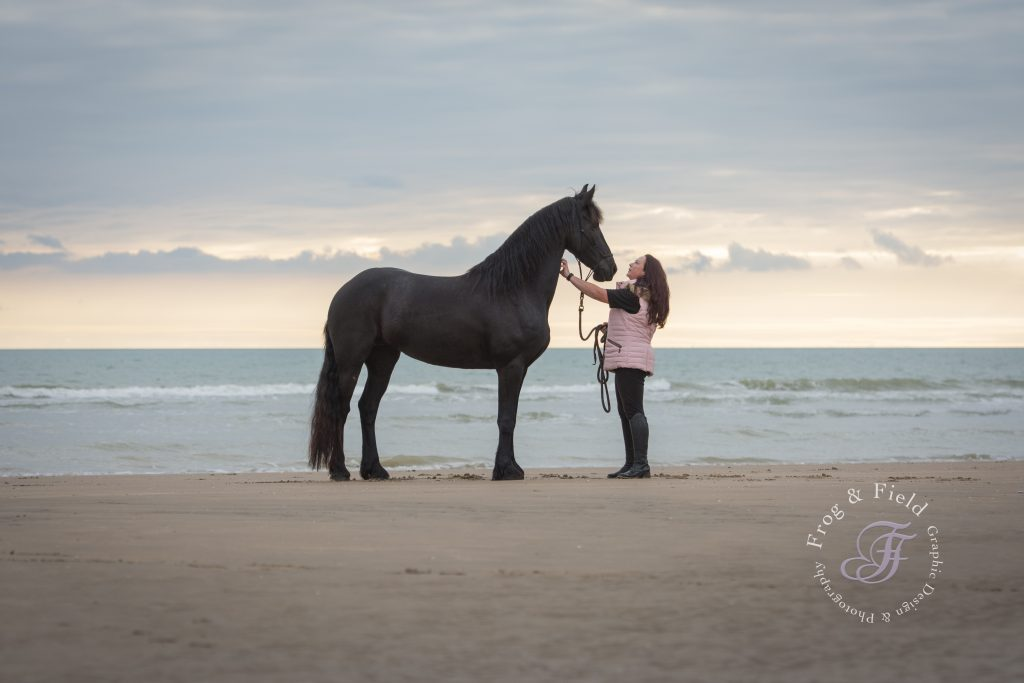 Kent Equine Photographer