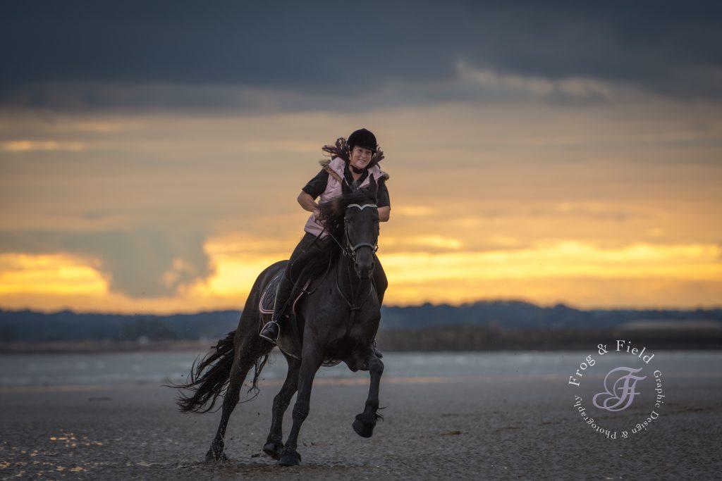 Kent Equine Photographer