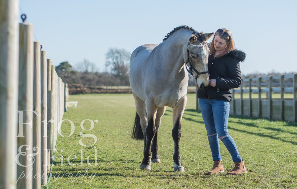 Equine Photoshoot by Kent Equine Photographer