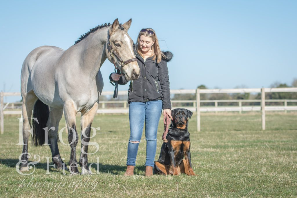Abi and Danny: Equine Portrait Session Canterbury