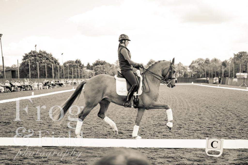 The International Day at Royal Berkshire Polo Club