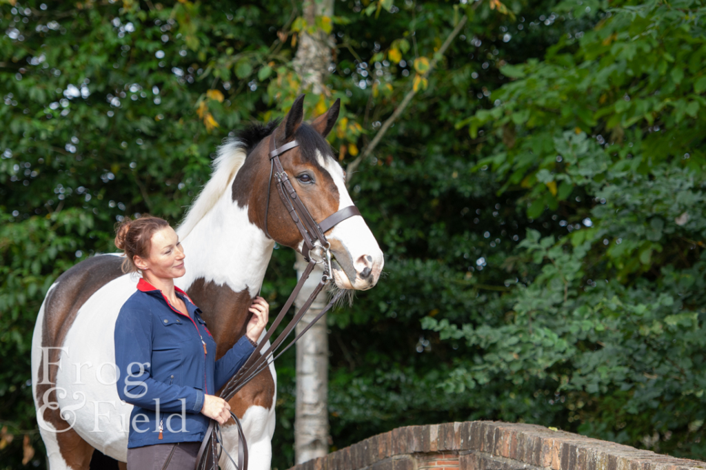 Equine Photography Surrey